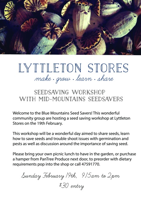 lyttleton_garden_seedsaving